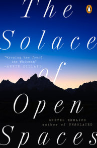 The Solace of Open Spaces
