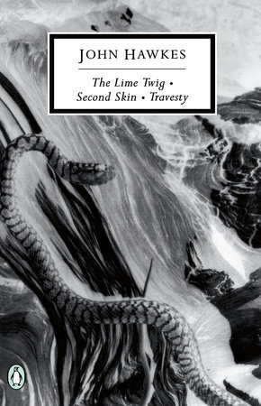 The Lime Twig by John Hawkes