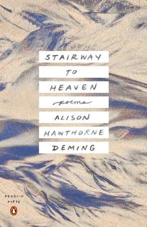 Stairway to Heaven by Alison Hawthorne Deming