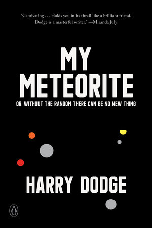 My Meteorite by Harry Dodge