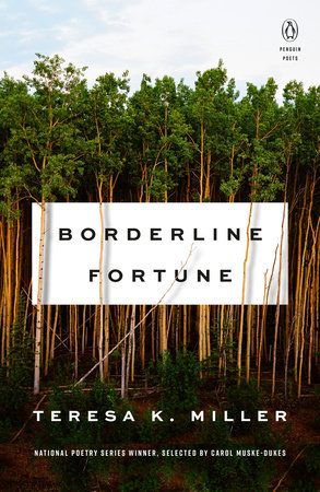 Borderline Fortune by Teresa K. Miller