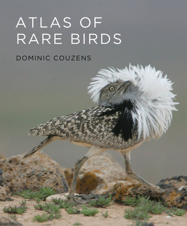 Atlas of Rare Birds by Dominic Couzens