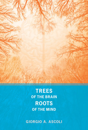 Trees of the Brain, Roots of the Mind by Giorgio A. Ascoli