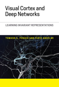 Visual Cortex and Deep Networks