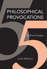 Philosophical Provocations