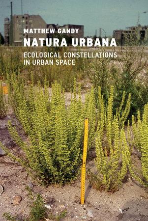 Natura Urbana by Matthew Gandy