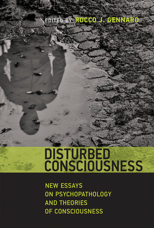 Disturbed Consciousness by