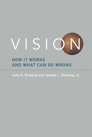 Vision by John E. Dowling and Joseph L. Dowling, Jr.