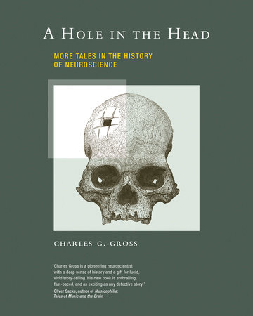 A Hole in the Head by Charles G. Gross