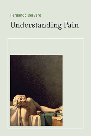 Understanding Pain by Fernando Cervero
