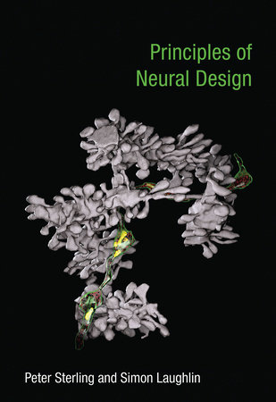 Principles of Neural Design by Peter Sterling and Simon Laughlin