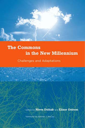 The Commons in the New Millennium by