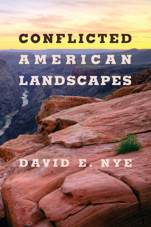 Conflicted American Landscapes by David E. Nye