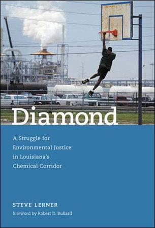 Diamond by Steve Lerner