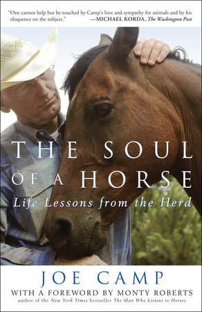 The Soul of a Horse by Joe Camp