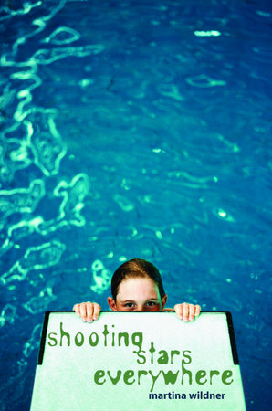 Shooting Stars Everywhere by Martina Wildner