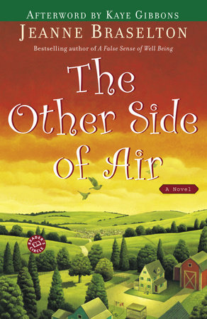 The Other Side of Air by Jeanne Braselton