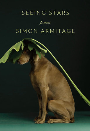 Seeing Stars by Simon Armitage