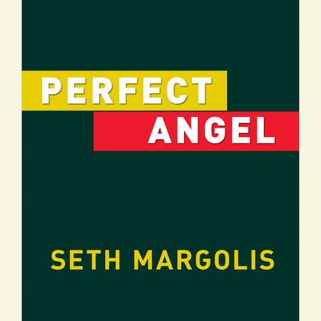 Perfect Angel by Seth Margolis