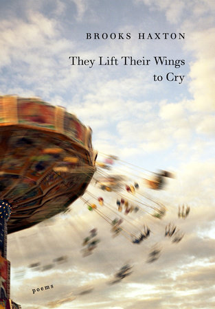They Lift Their Wings to Cry by Brooks Haxton