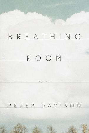 Breathing Room by Peter Davison