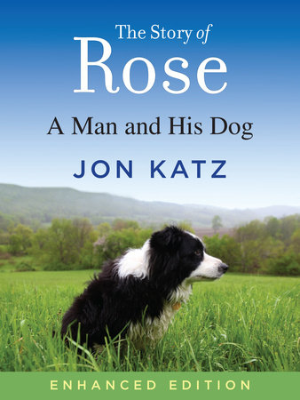 The Story of Rose (Enhanced Edition) by Jon Katz