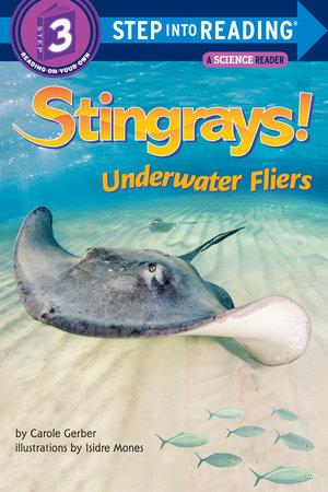 Stingrays! Underwater Fliers by Carole Gerber