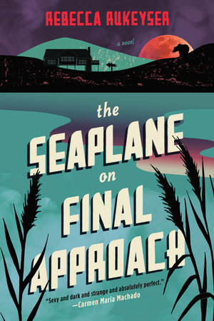The Seaplane on Final Approach by Rebecca Rukeyser
