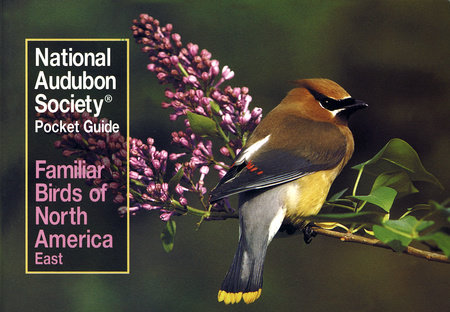National Audubon Society Pocket Guide to Familiar Birds: Eastern Region by National Audubon Society