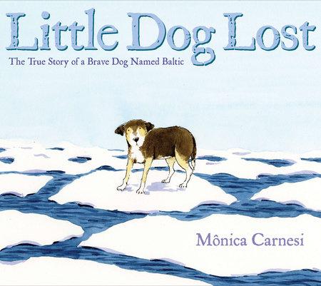 Little Dog Lost by Mônica Carnesi