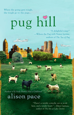 Pug Hill by Alison Pace