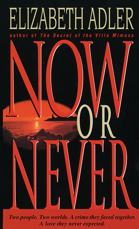 Now or Never by Elizabeth Adler