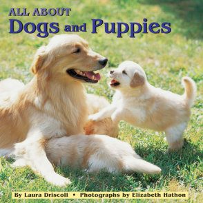 All about Dogs and Puppies