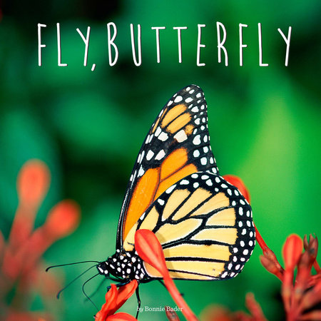 Fly, Butterfly by Bonnie Bader