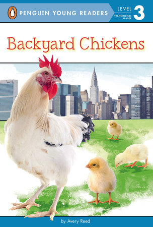 Backyard Chickens by Avery Reed