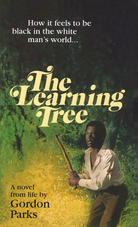 Learning Tree by Gordon Parks