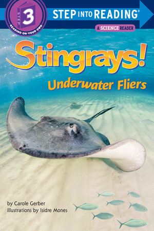 Stingrays! Underwater Fliers by Carole Gerber