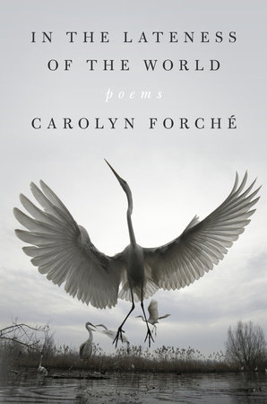 In the Lateness of the World by Carolyn Forché