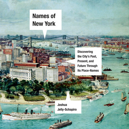 Names of New York by Joshua Jelly-Schapiro