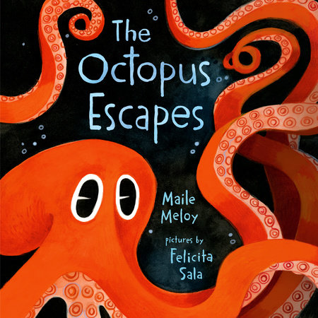 The Octopus Escapes by Maile Meloy
