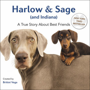 Harlow & Sage (and Indiana)