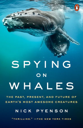 Spying on Whales by Nick Pyenson