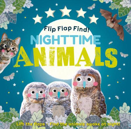 Flip Flap Find! Night-time Animals by DK