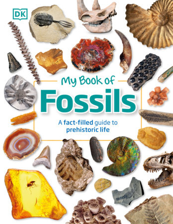 My Book of Fossils by DK