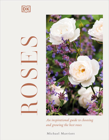 Roses by Michael V Marriott