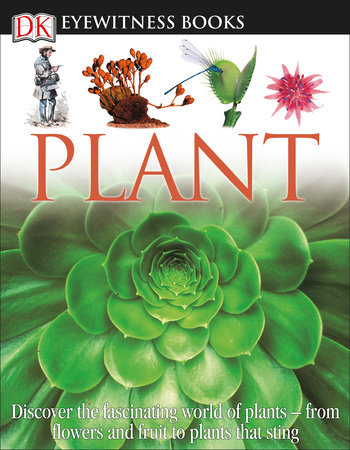 DK Eyewitness Books: Plant by David Burnie