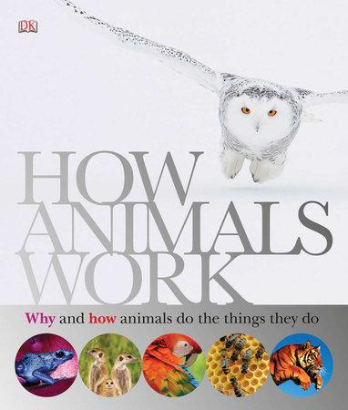 How Animals Work by DK