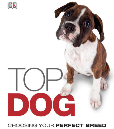 Top Dog by DK