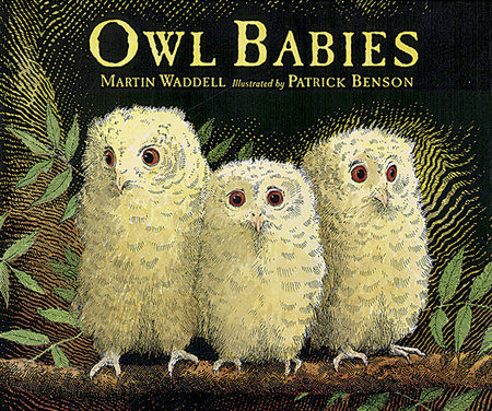 Owl Babies Big Book by Martin Waddell