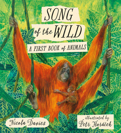 Song of the Wild: A First Book of Animals by Nicola Davies